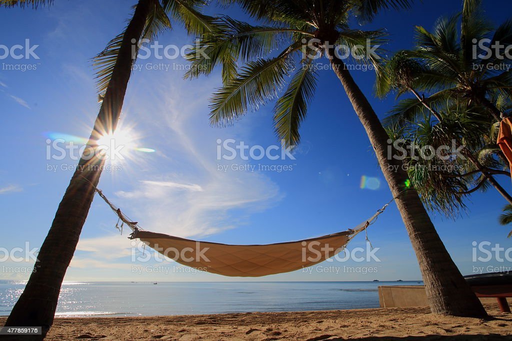 Hammock strung between coconut trees by the beach stock photo