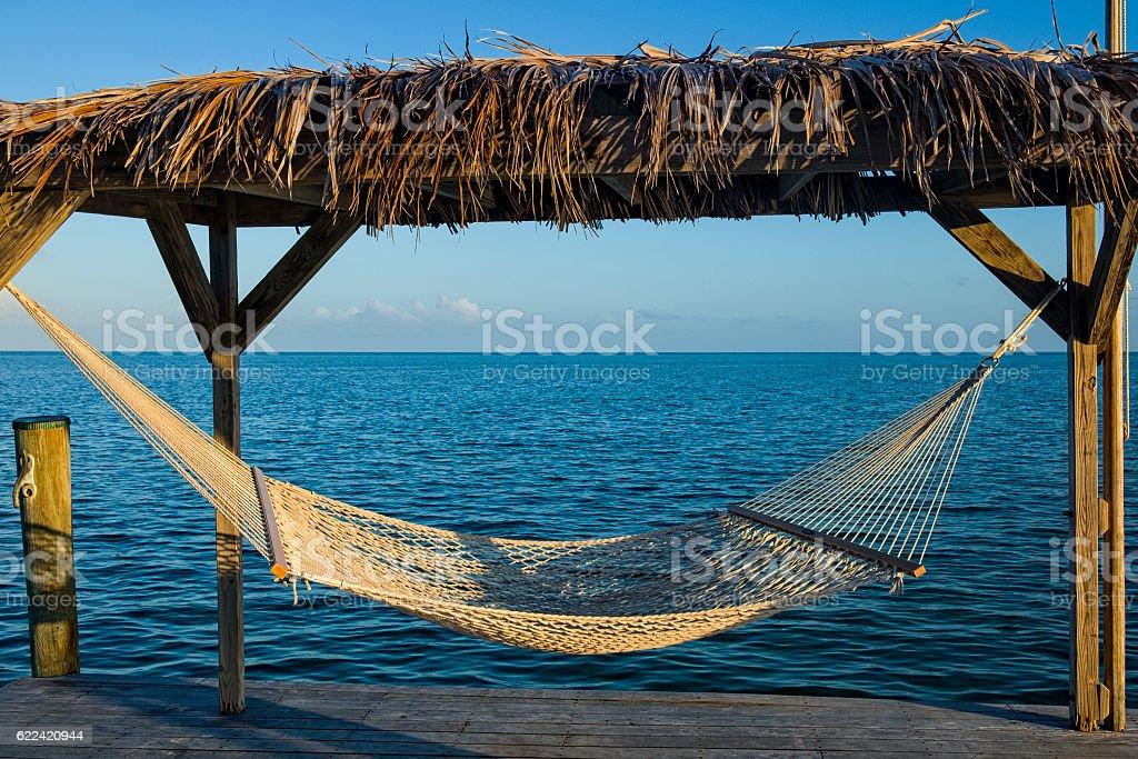 Hammock Tranquility in the Florida Keys stock photo
