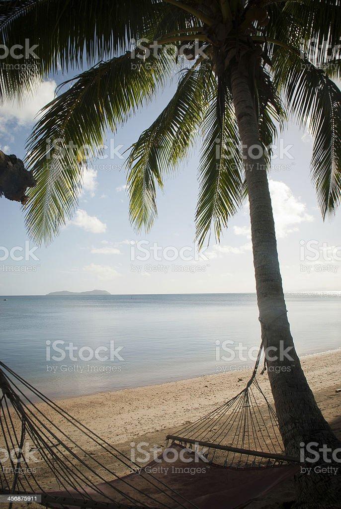 Hammock under a Palm Tree stock photo