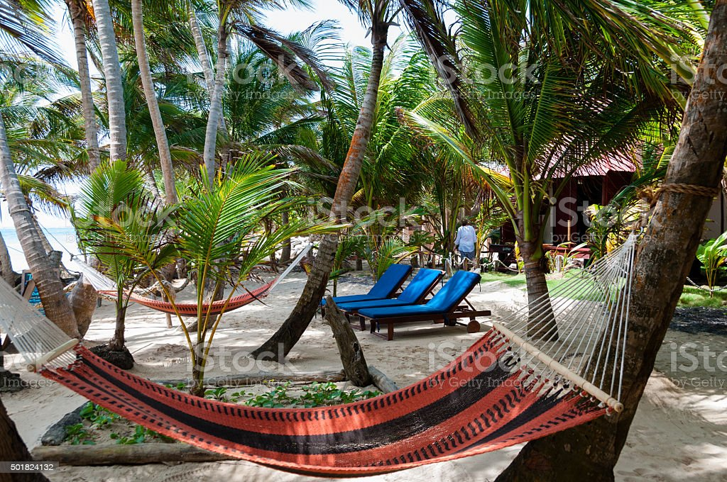 Hammocks and lounger in a Resort Under Coconut Tree Shades stock photo