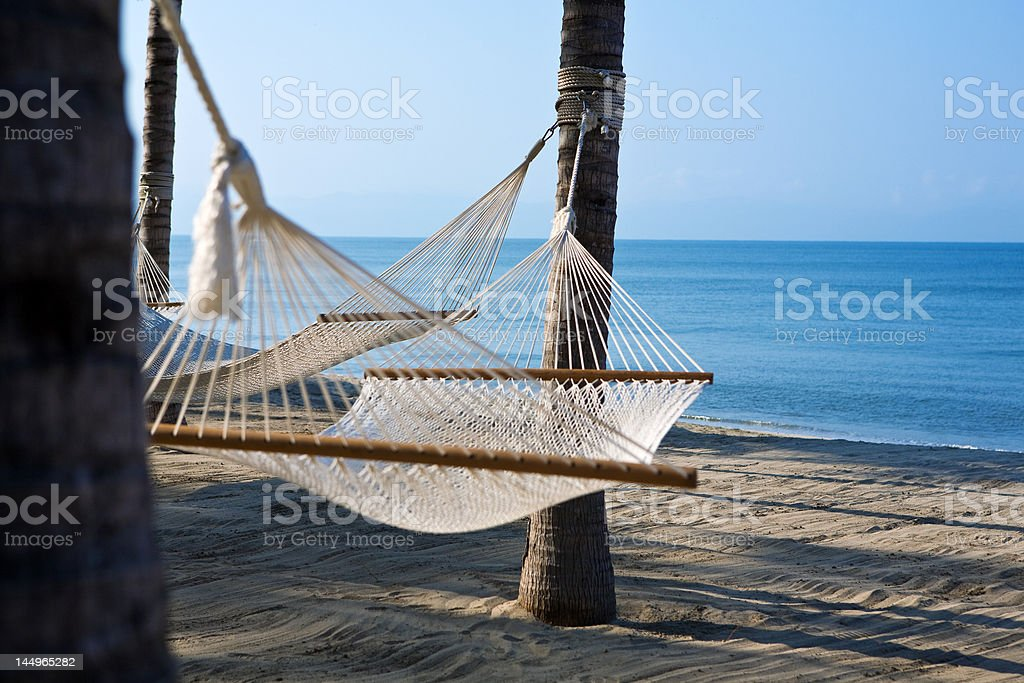 hammocks and palm trees in mexico royalty-free stock photo