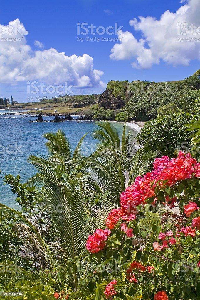 Hamoa Beach, Maui stock photo