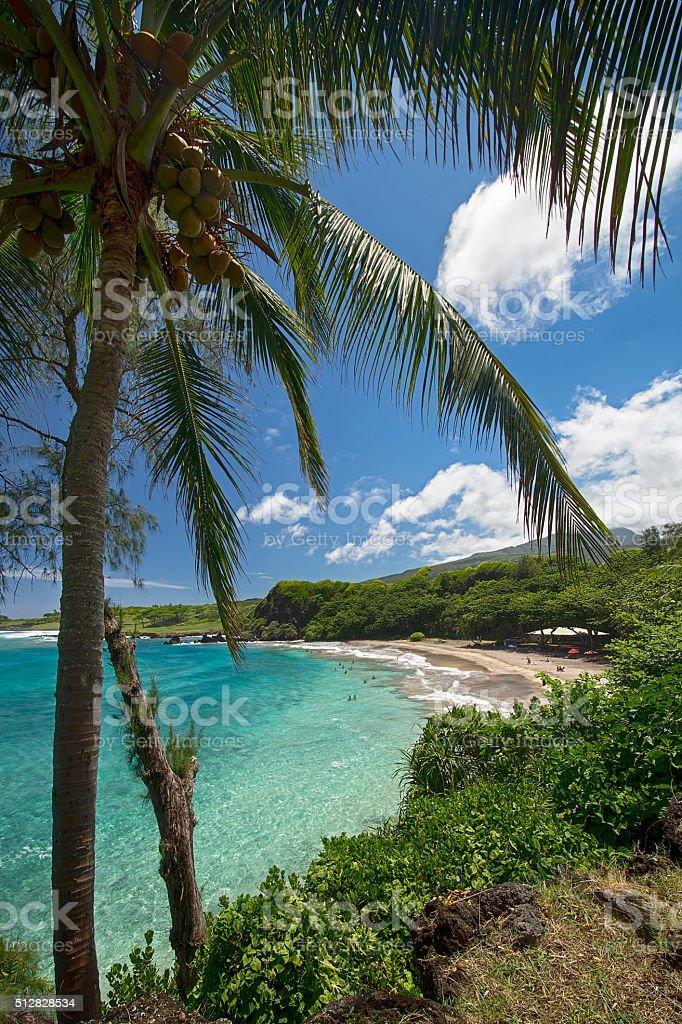 Hamoa Beach near, Hana, East side of Maui, Hawaii stock photo