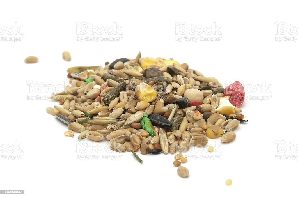 Hamster Food Mix royalty-free stock photo