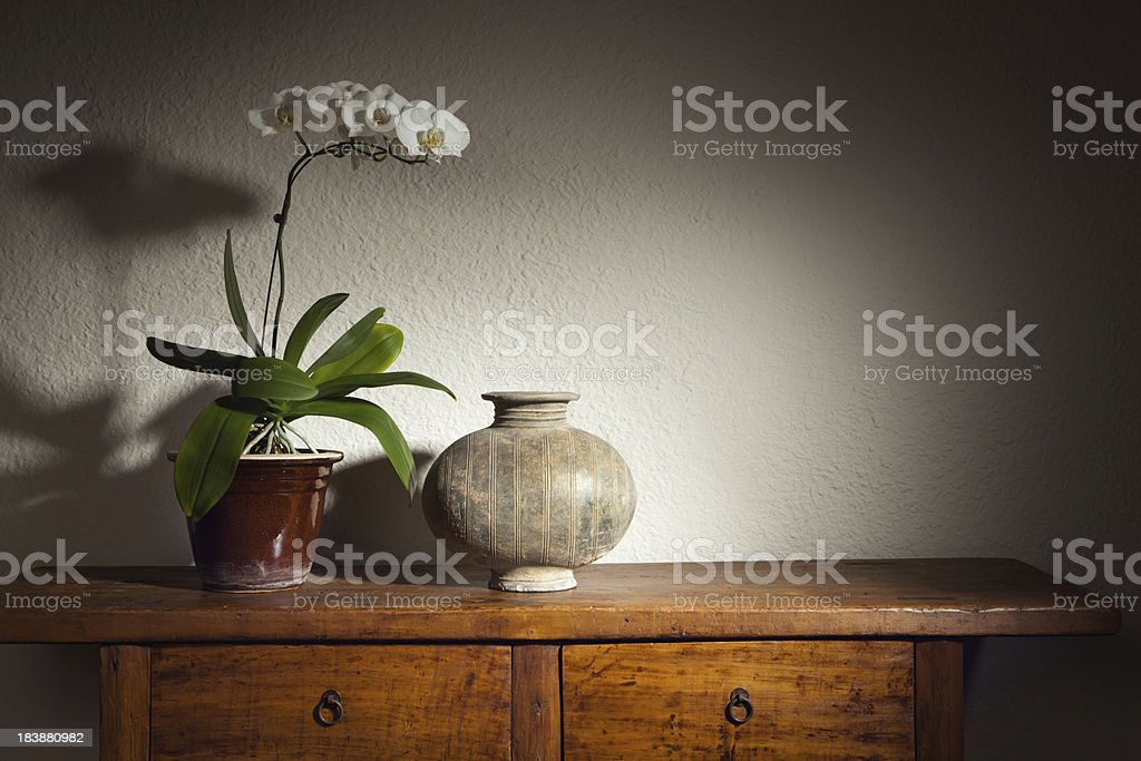 Han Dynasty Chinese Antique Cocoon Vase and Orchid Hz stock photo