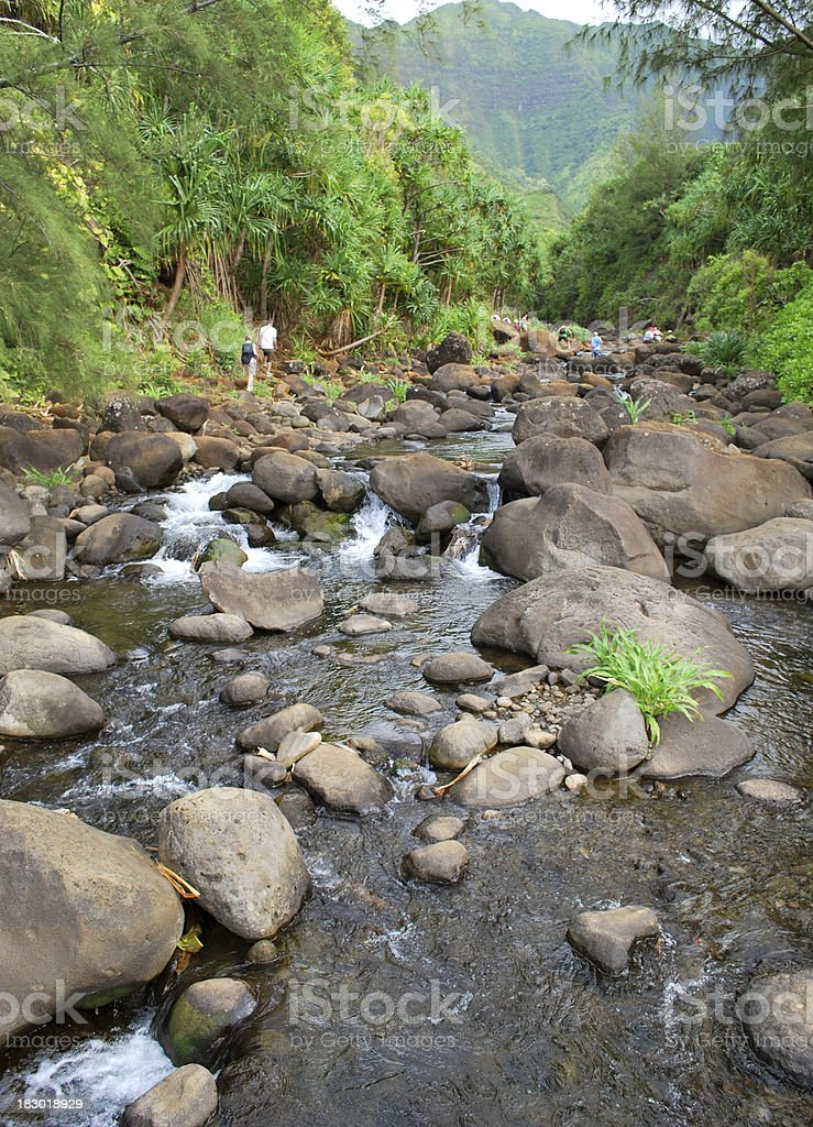 Hanakapai'ai Valley river in Kauai, Hawaii. stock photo