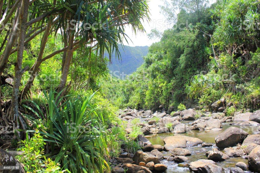 Hanakapiai Stream on the Ne Pali Coast of Kauai, Hawaii stock photo