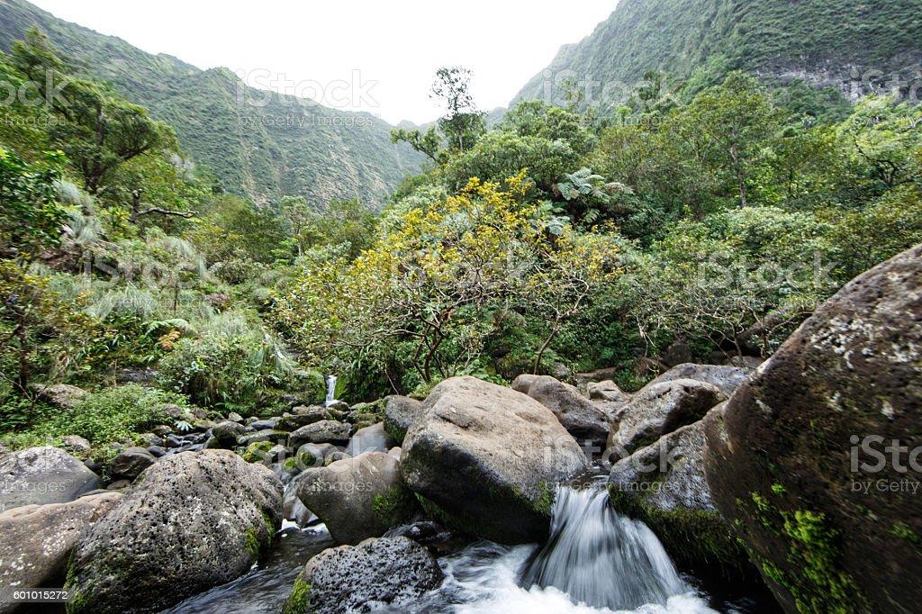 Hanakapi'ai Valley River (Kauai) stock photo