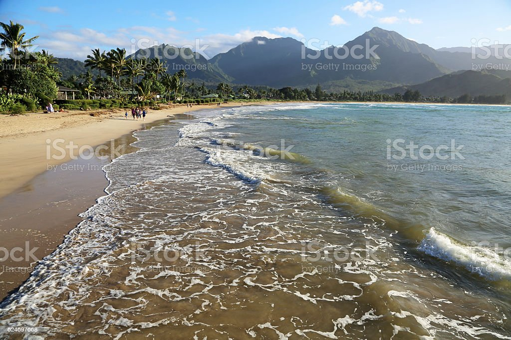 Hanalei Beach stock photo