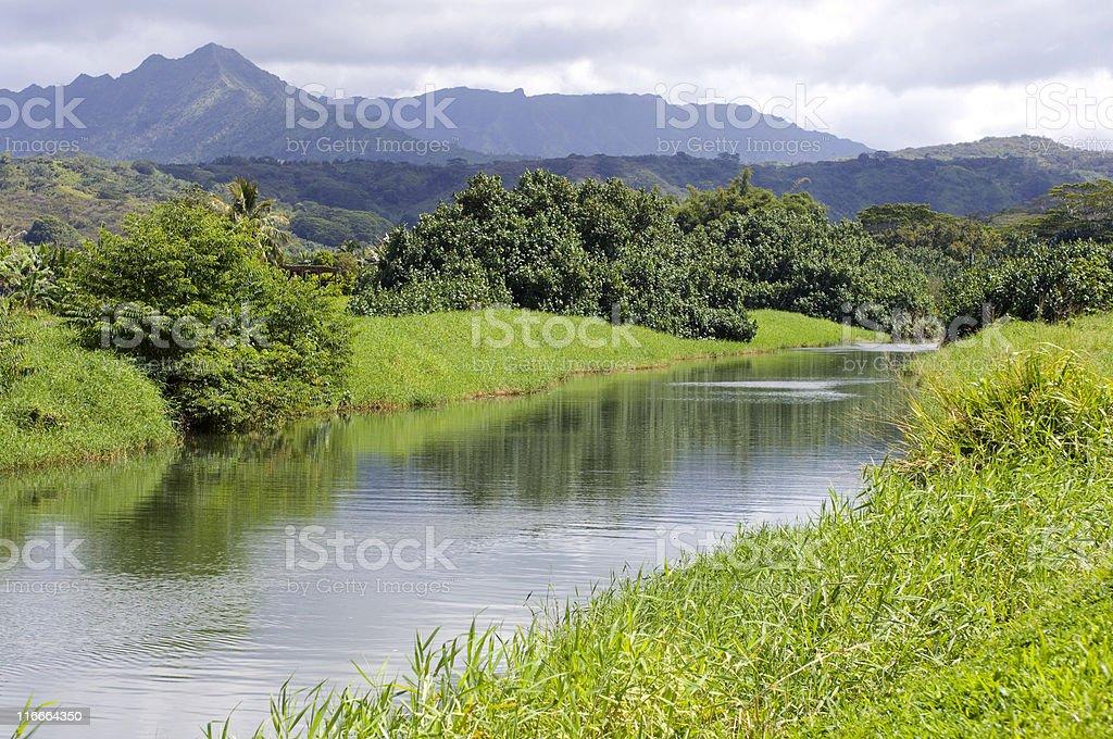 Hanalei River stock photo