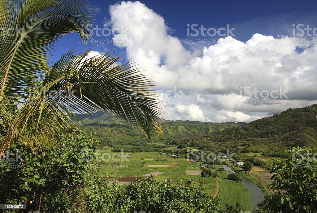 Hanalei Valley scenic, Kauai Hawaii stock photo