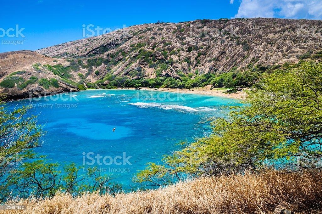 Hanauma Bay Reef stock photo