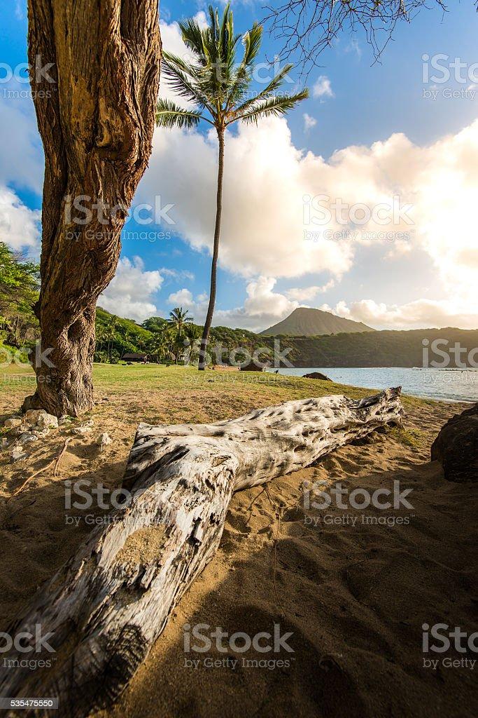 Hanauma Bay Sunrise stock photo