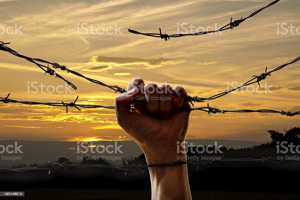 hand behind barbed wire stock photo