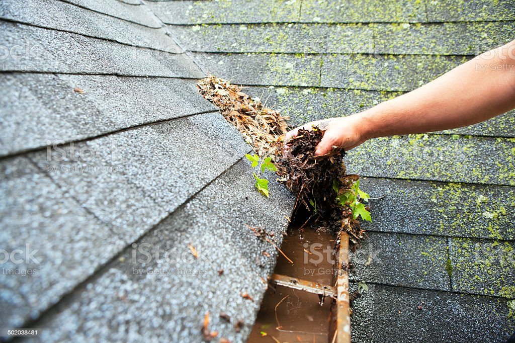 Hand Cleaning Copper Rain Gutter stock photo