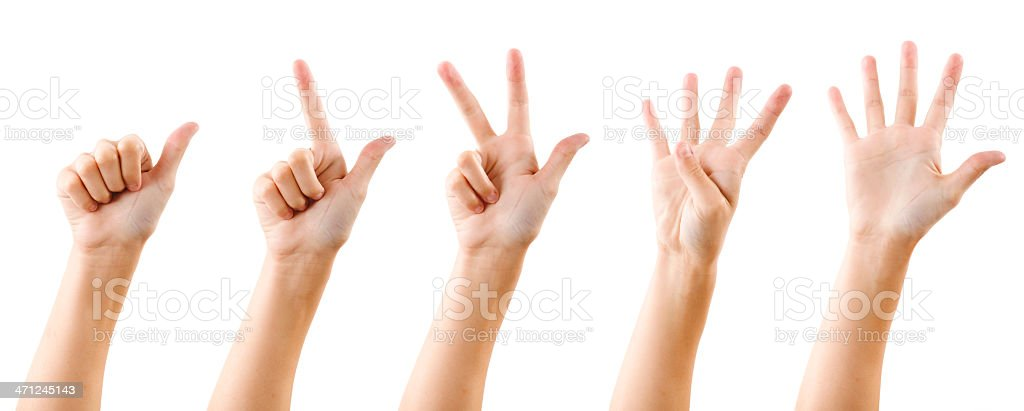 Hand counting to 5 royalty-free stock photo