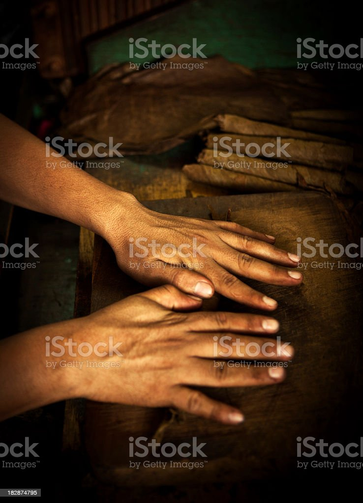 hand details of a cigar roller stock photo
