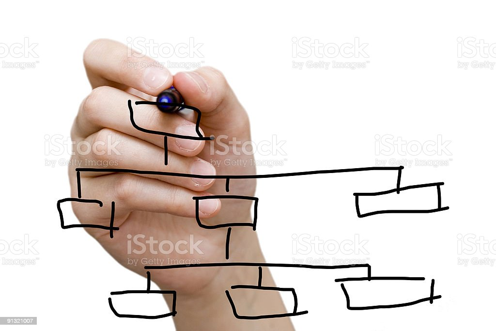 Hand drawing a tree diagram with marker on a whiteboard stock photo