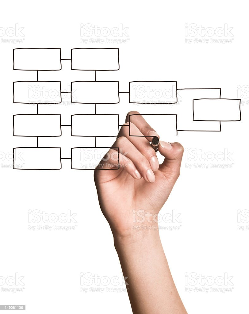 Hand drawing blank organization chart on white background stock photo