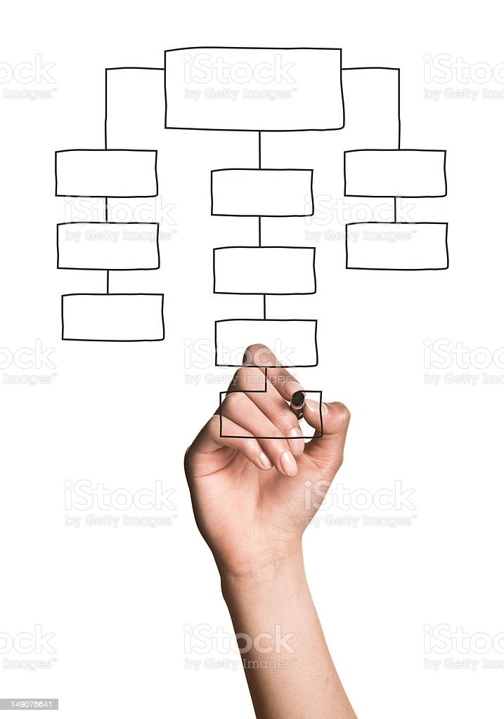 Drawing Organization Chart Pictures Images And Stock Photos  Istock