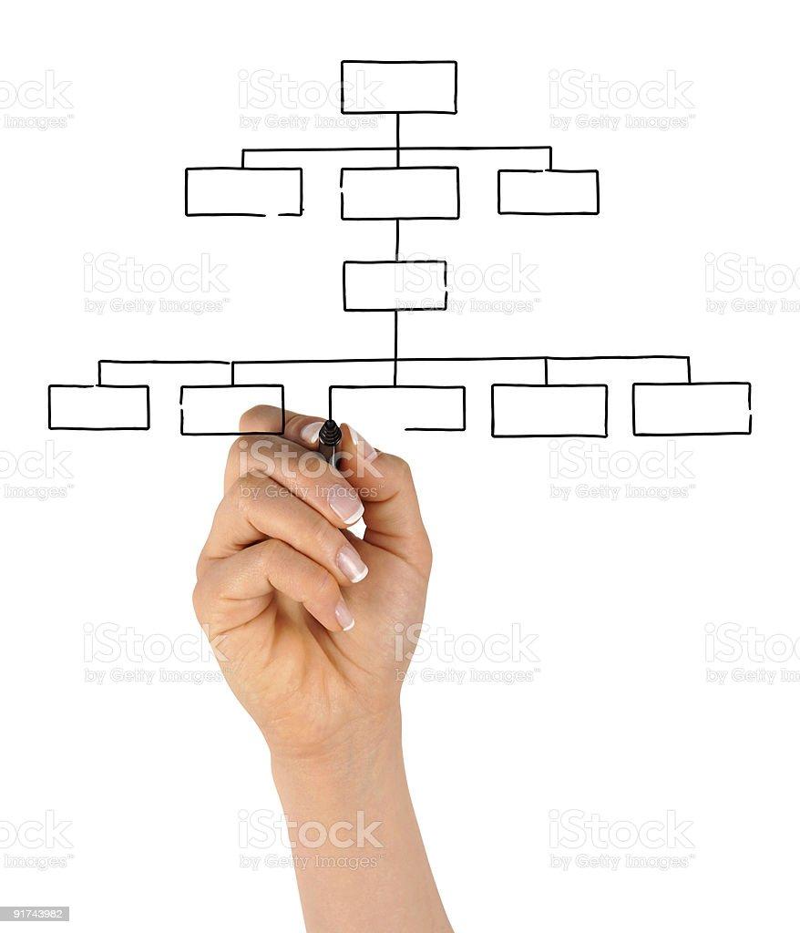 Hand Drawing Blank Organization Chart royalty-free stock photo