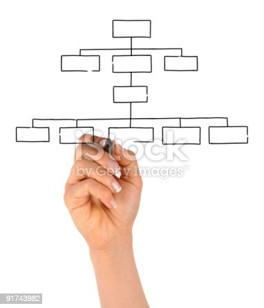 Hand Drawing Blank Organization Chart Stock Photo   Istock