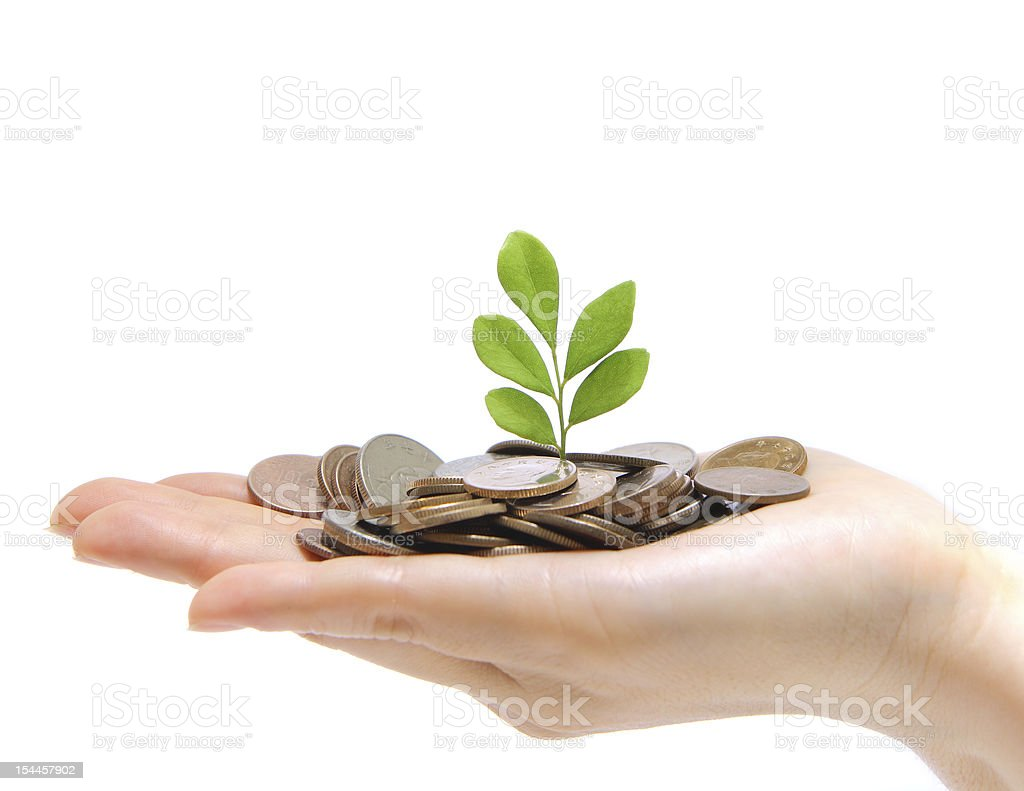 hand full of money and holding a green plant stock photo