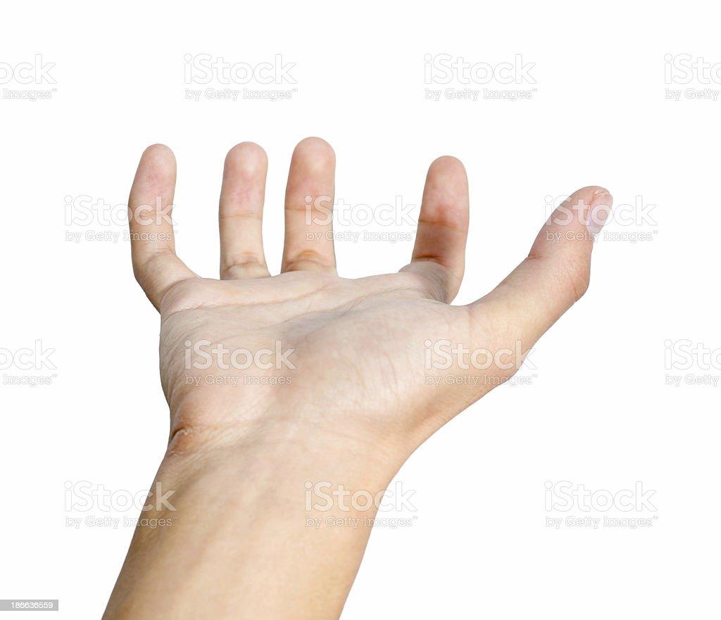 Hand hold royalty-free stock photo
