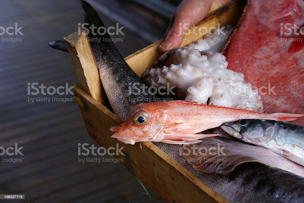 Hand holding a box of freshly caught fish & octopus stock photo