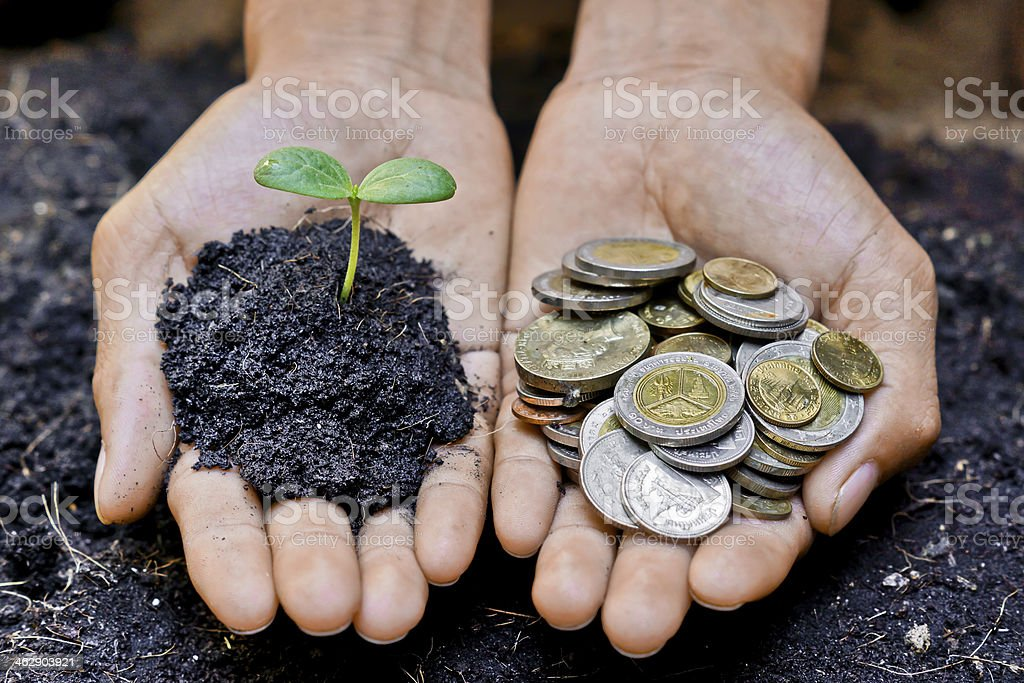Hand holding a plant seedling and another one holding coins stock photo