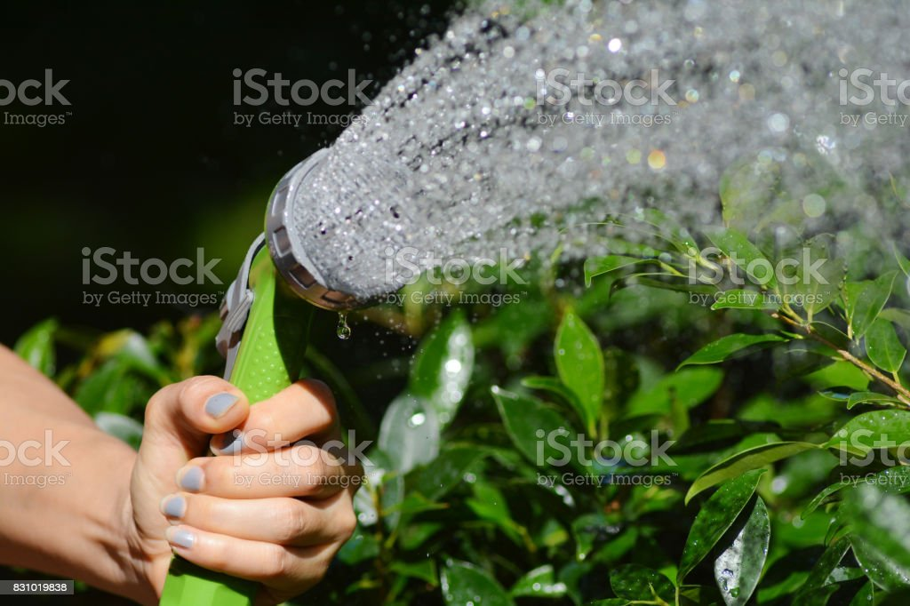 Hand holding a spray on the water. stock photo