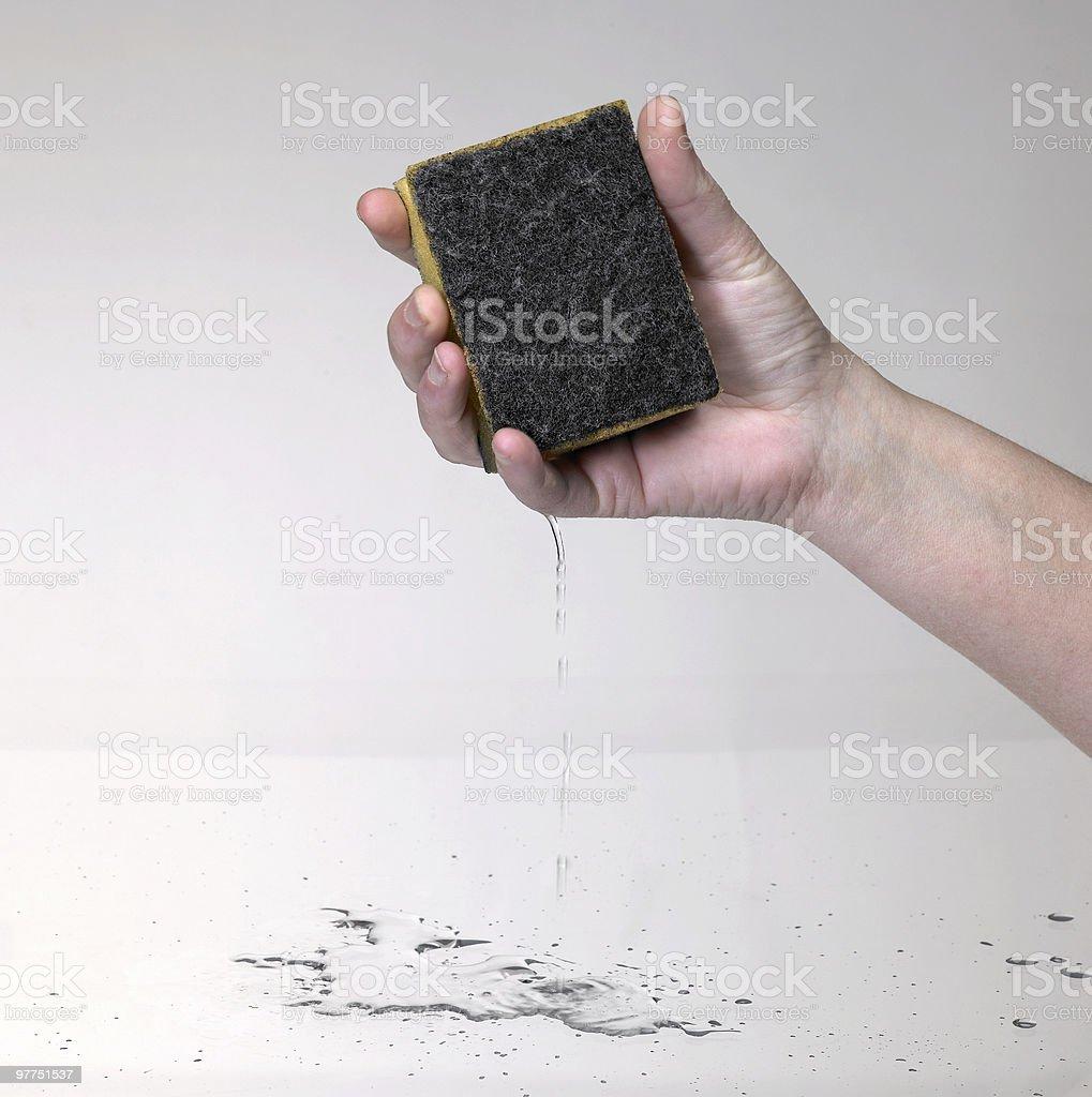 hand holding a wet sponge stock photo