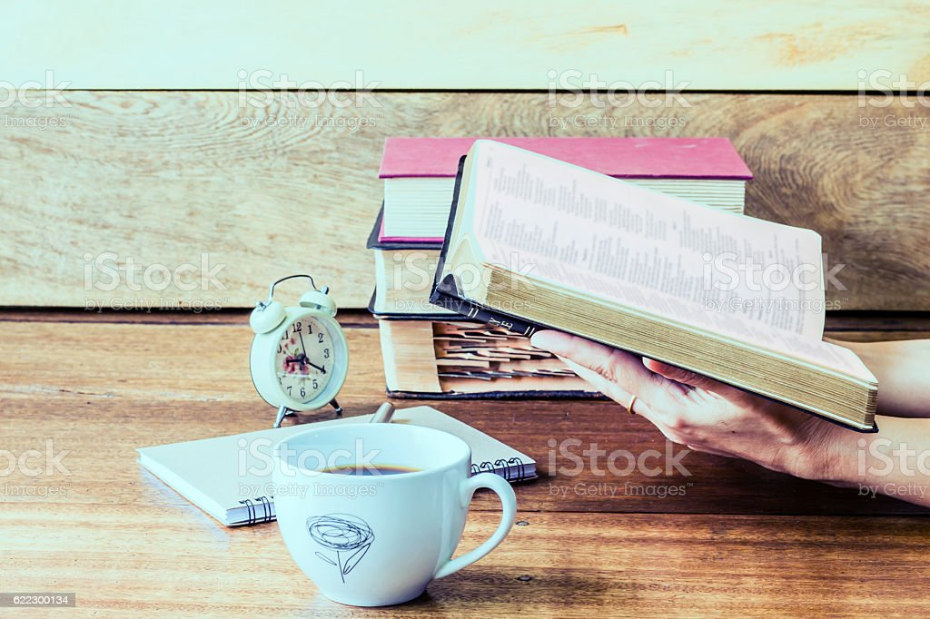 hand holding and reading bible stock photo