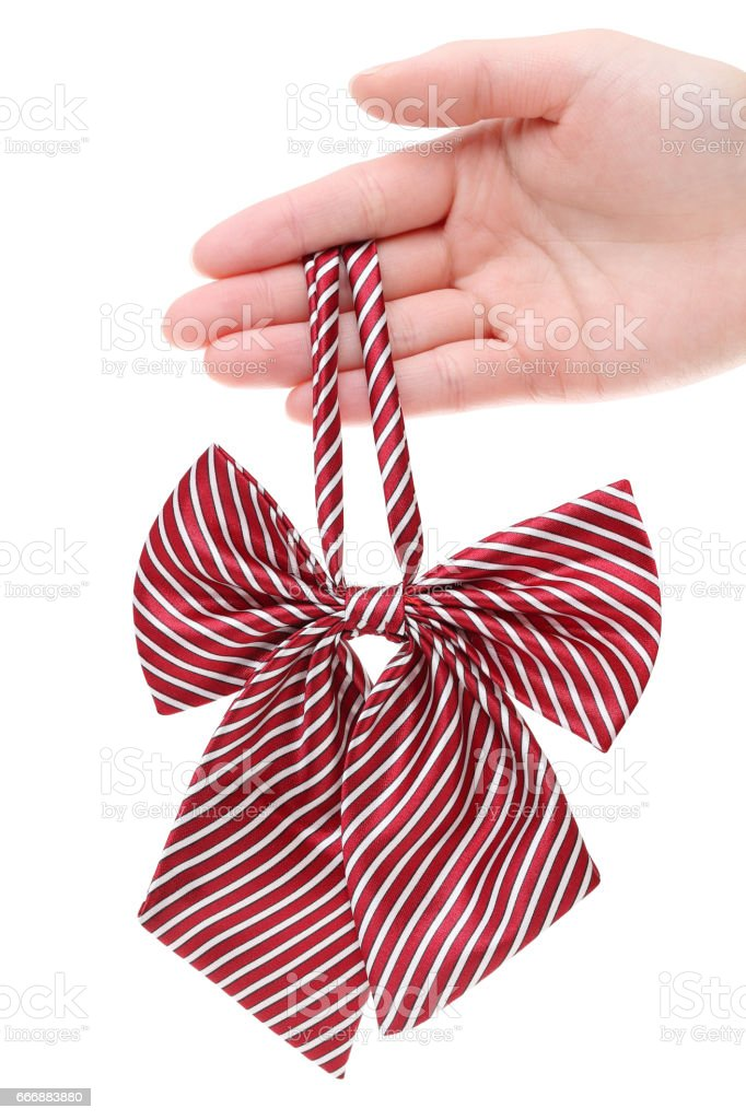 Hand holding bow tie for woman stock photo