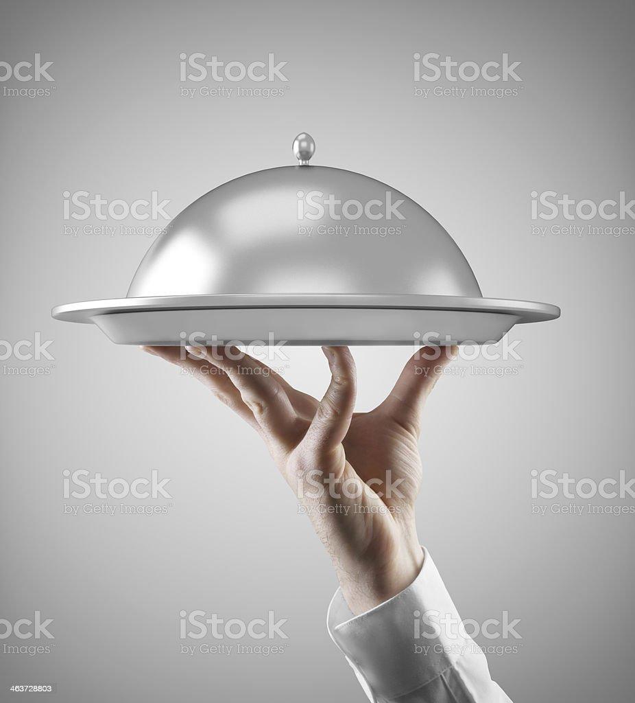 Hand holding dish isolated on gray background stock photo