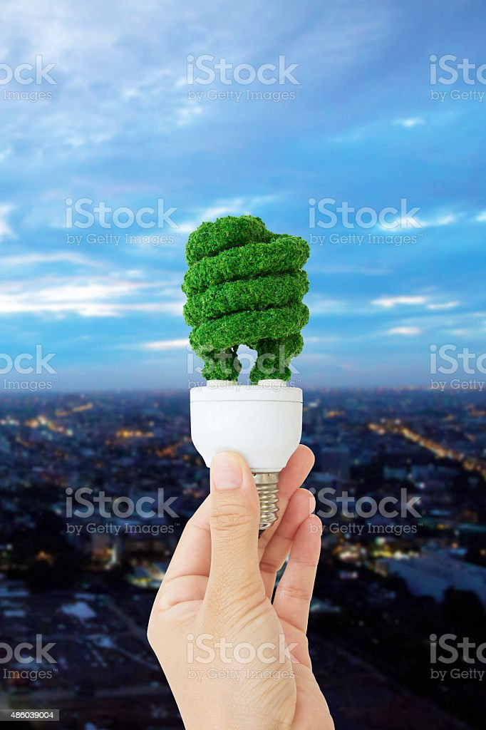 hand holding eco light bulb energy concept stock photo