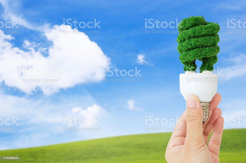 hand holding eco light bulb stock photo