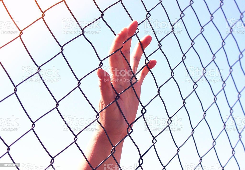 Hand holding fence stock photo
