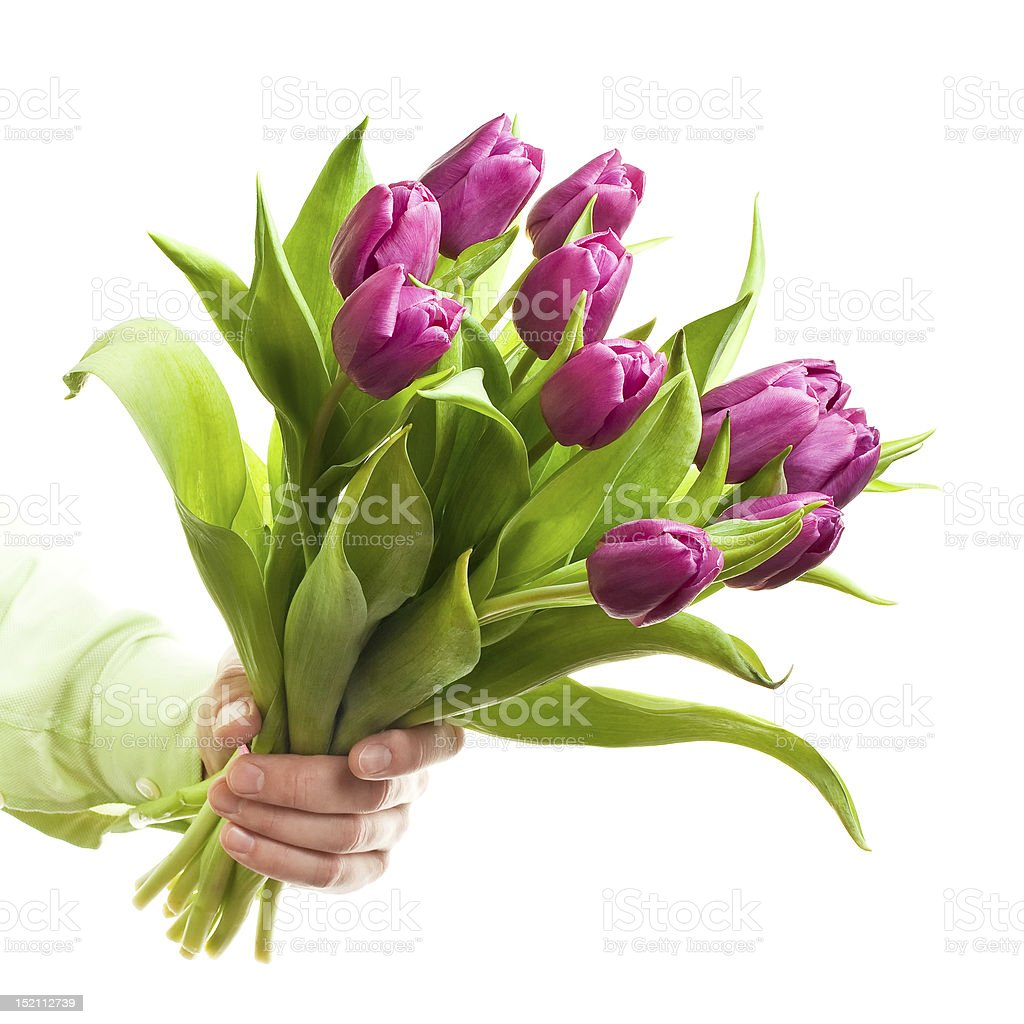 Hand holding flowers stock photo
