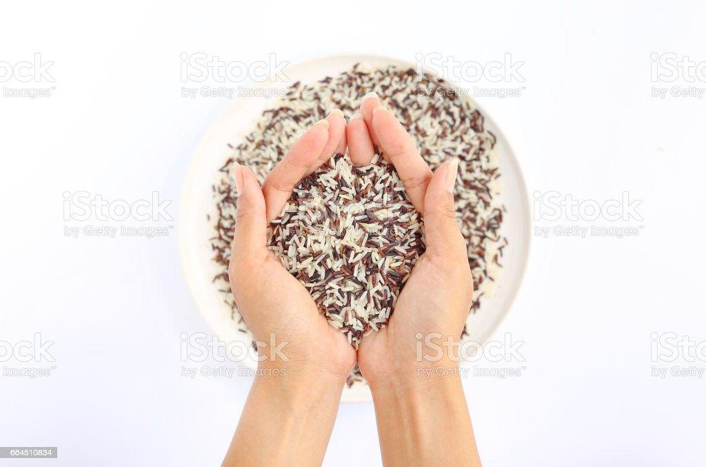 Hand holding Jasmine red and white rice on white plate. stock photo