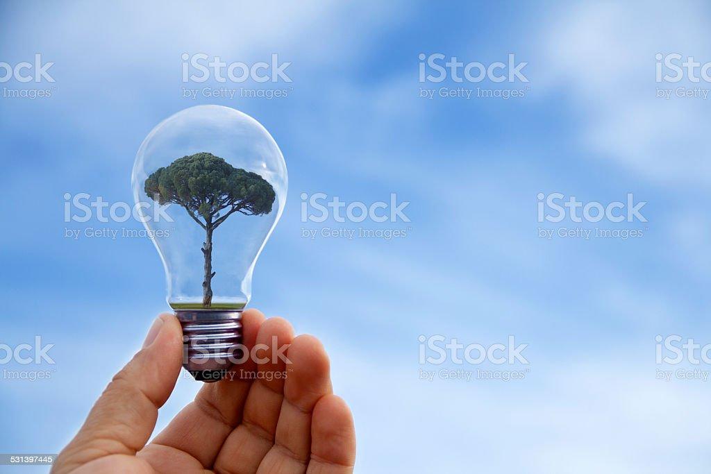 Hand holding light bulb, close-up stock photo