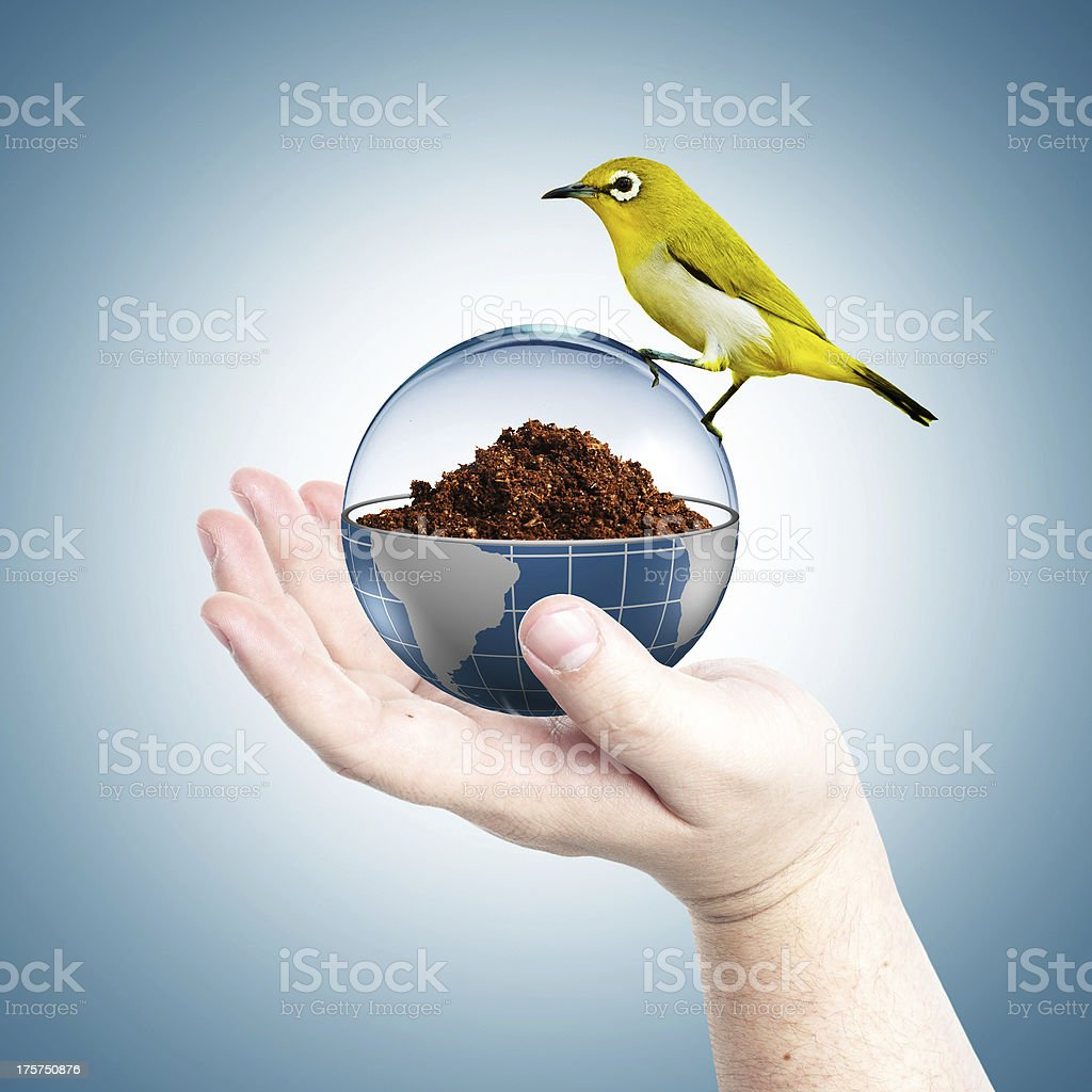 Hand holding lightbulb with green plant royalty-free stock photo