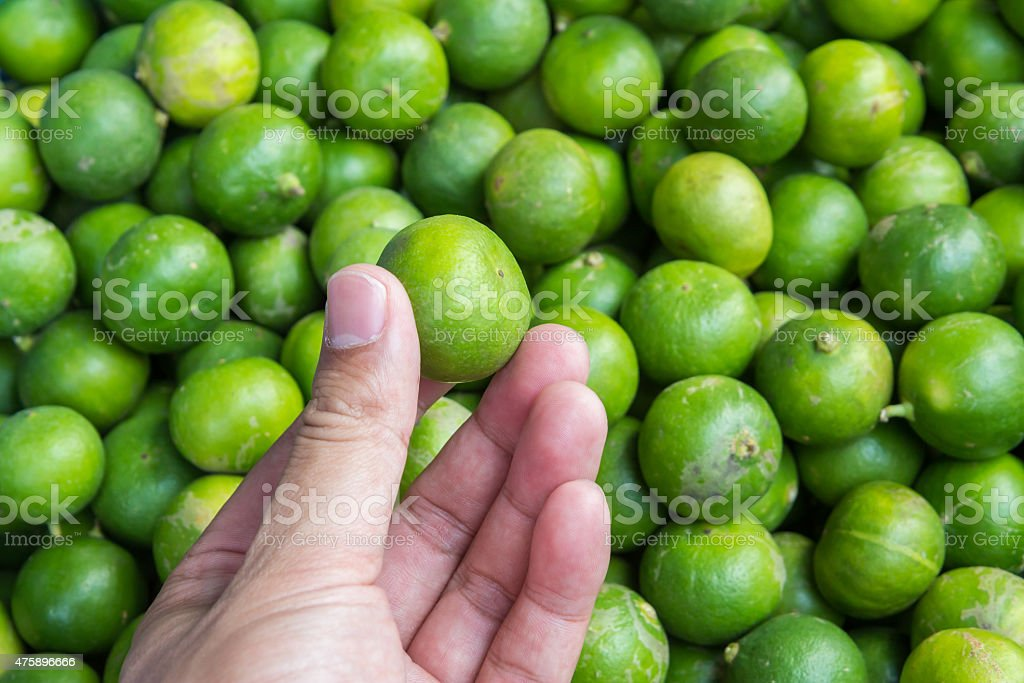 Hand holding lime at market,Thailand royalty-free stock photo