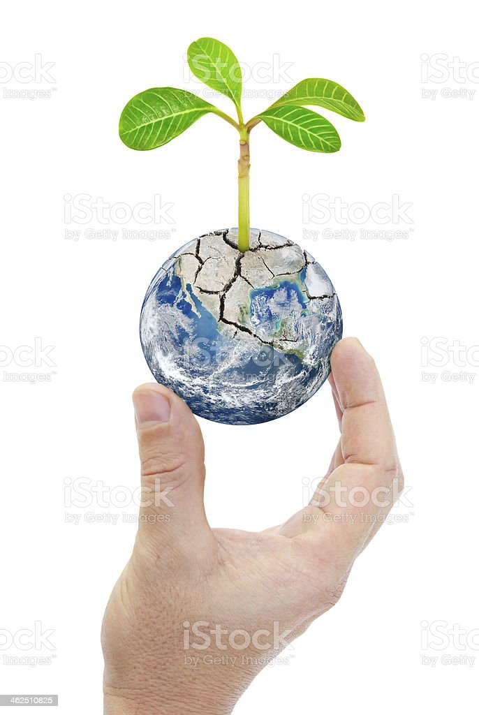 Hand holding planet earth with plants isolated on white background. stock photo