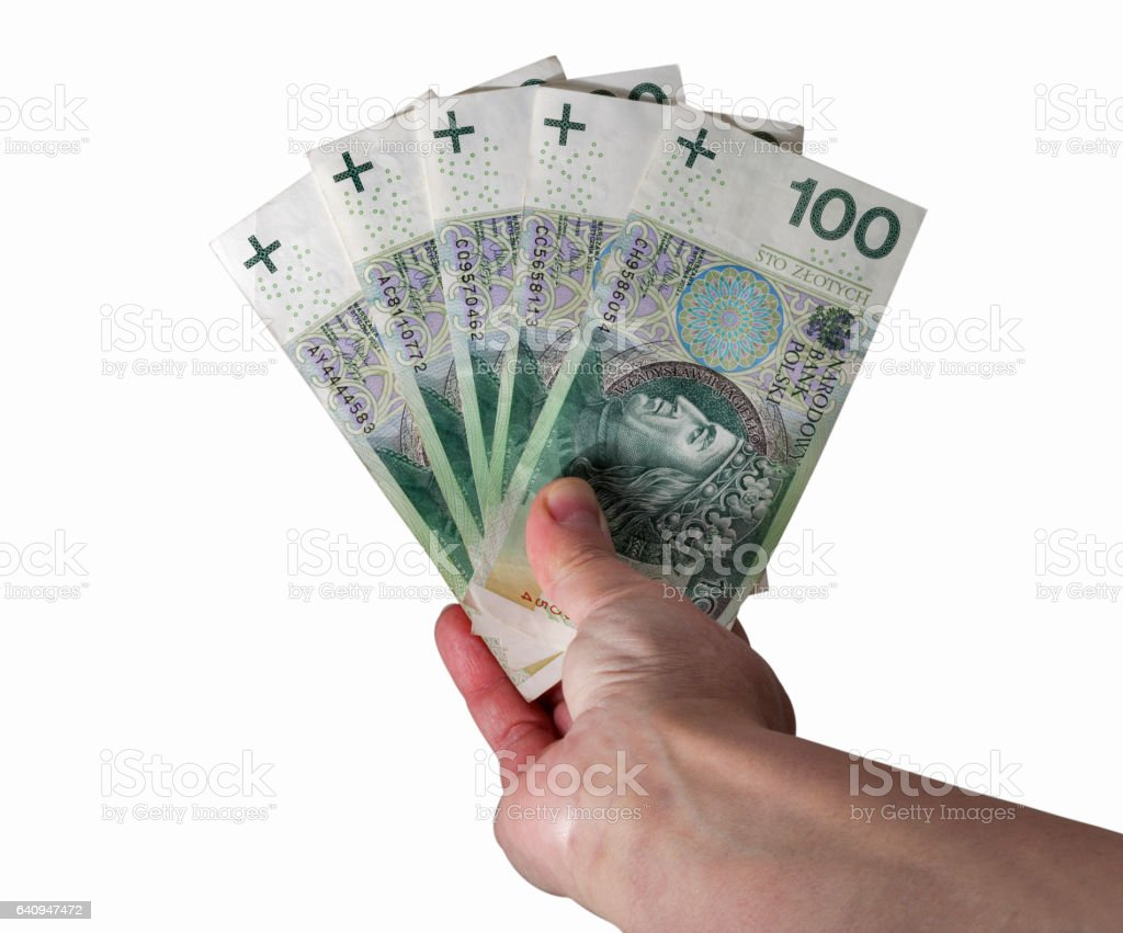 Hand holding polish zloty bills isolated on white stock photo