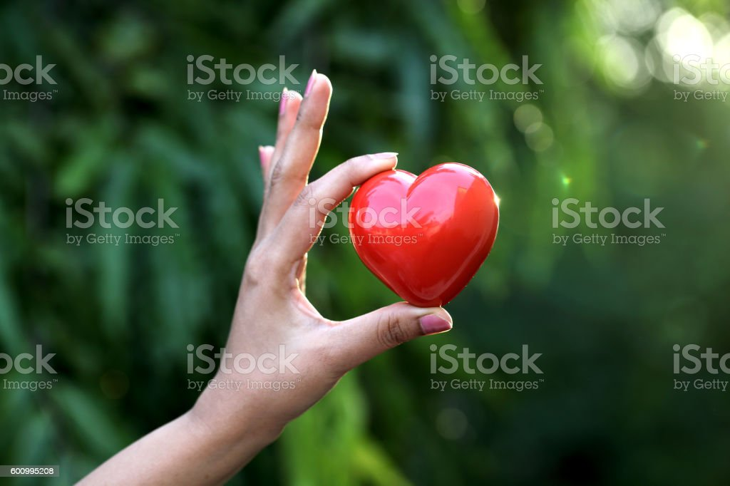Hand holding red heart shape stock photo