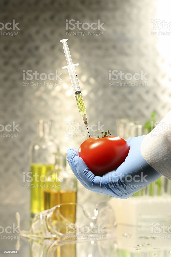 Hand holding tomato with syringe royalty-free stock photo