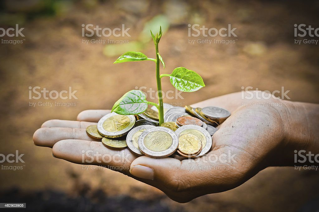 hand holding tress growing on coins royalty-free stock photo