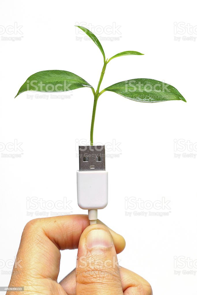 hand holding usb cable with a small plant royalty-free stock photo