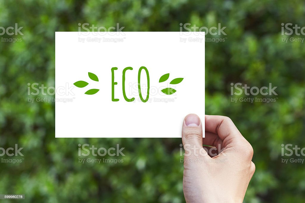 Hand holds  a paper card with Eco. Mockup. stock photo